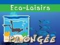 Les Heures Saines - Centre de plongée en Guadeloupe